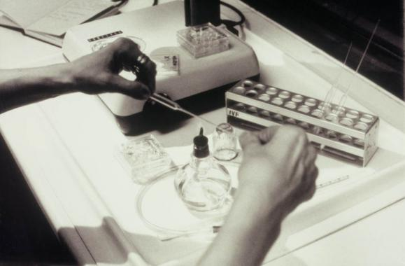 Helen Chadwick preparing specimens for viewing in the microscope.