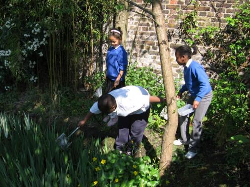 Children from Heathbrook School search for pond life with Antony Hall.