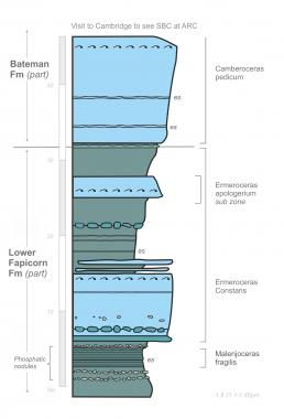 Stratigraphic illustration of artist Jon Adam's visit to ARC