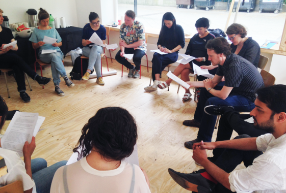 A Public Hearing, How to Speak, group activity, 2016